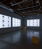 "Jennifer Peterson reviews Pat O'Neill's ""Decay of Fiction"" (installation) PDF"